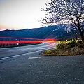 Blühender Baum am Wegesrand - panoramio.jpg