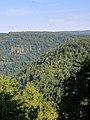 Blackwater Falls State Park WV 08.jpg