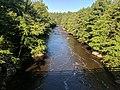 Blackwater Falls State Park WV 16.jpg