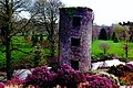 Blarney Castle Grounds - Adjacent northeast tower - geograph.org.uk - 1625424.jpg