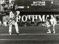 Bob Taylor batting vs NZ, February 1978.jpg