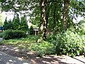 Bomen Groot Schuylenburg.JPG