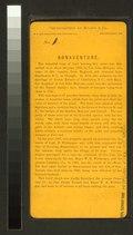 Bonaventure Cemetery (NYPL b11707429-G90F152 018B).tiff