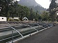 Bonneville Fish Hatchery 2017 2.jpg