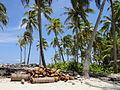 Booby Island (4906555482).jpg