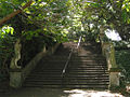 Botanical-Garden-step.jpg
