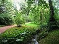 Botanischer Garten der TU Darmstadt - IMG 7042.JPG