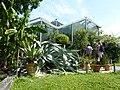 Botanischer Garten der Universität Basel - Ansicht 5.jpg