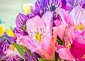 Bouquet (31013040691).jpg