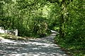 Bridge near Rowse - geograph.org.uk - 179911.jpg