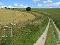 Bridleway, Amesbury Down - geograph.org.uk - 491463.jpg