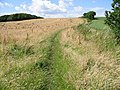 Bridleway at Millbank, near Maypole - geograph.org.uk - 487687.jpg