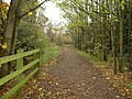 Bridleway between Greasby and Arrowe Park - geograph.org.uk - 619774.jpg