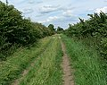 Bridleway in the Hoton Hills - geograph.org.uk - 905838.jpg