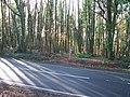 Bridleway meets main road - geograph.org.uk - 1597221.jpg