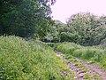 Bridleway near Hawkley - geograph.org.uk - 1338405.jpg