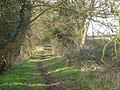 Bridleway near Hollybeds Farm - geograph.org.uk - 762077.jpg