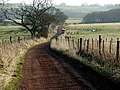 Bridleway to Smalldene - geograph.org.uk - 688591.jpg