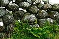 Brinlack - Stone wall - geograph.org.uk - 1181431.jpg