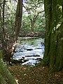 Bryngarw Country Park, Brynmenyn - geograph.org.uk - 568314.jpg