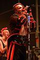 Burgfolk Festival 2014 - Saltatio Mortis 01.jpg