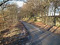 Burrs Wood. - geograph.org.uk - 133583.jpg
