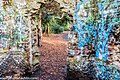 Bushy Park, Dublin (8389531939).jpg