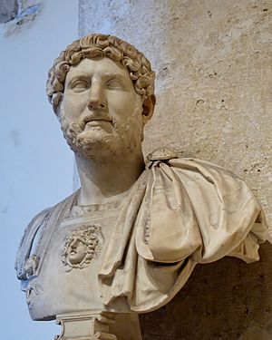 Nerva–Antonine dynasty - Image: Bust Hadrian Musei Capitolini MC817