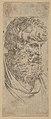 Bust of a bearded man MET DP837833.jpg