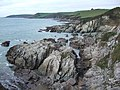 Butcher's Cove and Gull Cove - geograph.org.uk - 332722.jpg