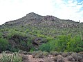 Butcher Jones Off-Trail, Tonto National Forest, Fort McDowell, AZ 85264, USA - panoramio.jpg