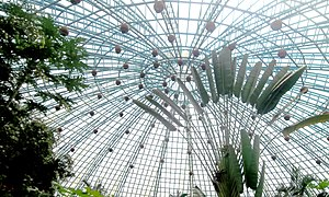 Bannerghatta National Park - Roof of the butterfly enclosure