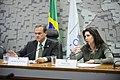 CDR - Comissão de Desenvolvimento Regional e Turismo (29796999483).jpg
