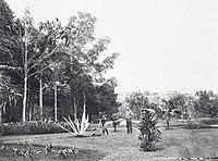 COLLECTIE TROPENMUSEUM Een kebon maait het gras in een deel van de tuin van een landhuis te Tje Badak (Soekaboemi) in de Preanger TMnr 60040019.jpg