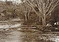COLLECTIE TROPENMUSEUM Kampong Si Garang-Garang aan een rivier Karolanden Sumatra`s Oostkust TMnr 60012286.jpg
