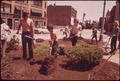 CONTINGENT FROM THE YOUTH OPPORTUNITIES CORPS BUILDS A POCKET PARK ON MAIN STREET - NARA - 553424.tif
