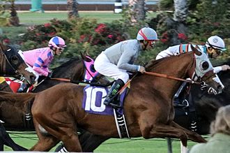 Chantal Sutherland - Sutherland  (background, in pink silks) riding against Victor Espinoza and California Chrome at Los Alamitos Racetrack, 2016