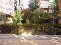 Calle de las Magnolias - panoramio.jpg