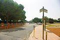 Camí de Blancafort.jpg