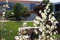 Campus Fall 2013 53 (9661926999).jpg