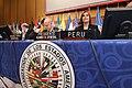 Canciller Eda Rivas presidió ceremonia de instalación de la 44ª Asamblea General de la OEA (14342754561).jpg