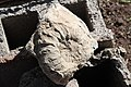 Caracol fosilizado - panoramio.jpg
