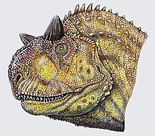 Drawing of a Carnotaurus head