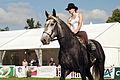 Carroussel à 16 chevaux montés Mondial du percheron 2011 Cl J Weber04 (23456726703).jpg