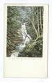 Cascade Notch Brook, No. Adams, Mass (NYPL b12647398-66365).tiff