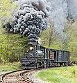 Cass Scenic Railroad State Park, West Virginia.jpg
