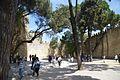 Castelo de São Jorge DSC 0152 (34487317812).jpg