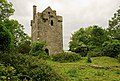 Castles of Connacht, Cloondagauv, Galway - geograph.org.uk - 1953374.jpg