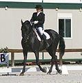 Cavallo Murgese Troiano ed Inama Roberta, gara di Dressage.JPG