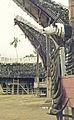 Celebes1977-22 hg.jpg